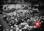 Image of International Flower Show New York City USA, 1961, second 16 stock footage video 65675041459
