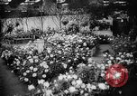 Image of International Flower Show New York City USA, 1961, second 17 stock footage video 65675041459