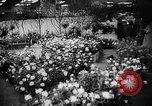 Image of International Flower Show New York City USA, 1961, second 18 stock footage video 65675041459