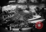 Image of International Flower Show New York City USA, 1961, second 28 stock footage video 65675041459