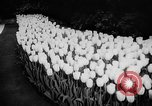 Image of International Flower Show New York City USA, 1961, second 30 stock footage video 65675041459