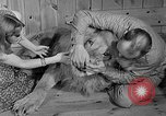 Image of Pet lion in captivity Illinois United States USA, 1954, second 11 stock footage video 65675041493