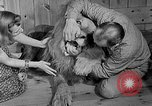 Image of Pet lion in captivity Illinois United States USA, 1954, second 13 stock footage video 65675041493