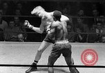 Image of Golden Gloves Light middleweight boxing  New York City USA, 1954, second 37 stock footage video 65675041494