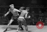 Image of Golden Gloves Light middleweight boxing  New York City USA, 1954, second 39 stock footage video 65675041494