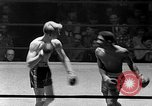 Image of Golden Gloves Light middleweight boxing  New York City USA, 1954, second 57 stock footage video 65675041494