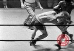 Image of Golden Gloves Light middleweight boxing  New York City USA, 1954, second 59 stock footage video 65675041494