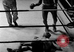 Image of Golden Gloves Light middleweight boxing  New York City USA, 1954, second 60 stock footage video 65675041494