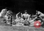 Image of underwater boxing Silver Springs Florida USA, 1954, second 39 stock footage video 65675041495