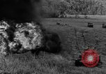 Image of tanks outfitted with hedgerow cutters and flame throwers Europe, 1944, second 47 stock footage video 65675041512