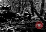 Image of United States infantry France, 1944, second 51 stock footage video 65675041514