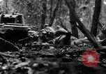 Image of United States infantry France, 1944, second 54 stock footage video 65675041514