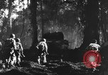 Image of United States infantry France, 1944, second 61 stock footage video 65675041514