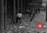 Image of Infantry Osterode Germany, 1945, second 15 stock footage video 65675041531