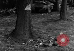 Image of Infantry Osterode Germany, 1945, second 20 stock footage video 65675041531