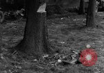 Image of Infantry Osterode Germany, 1945, second 24 stock footage video 65675041531
