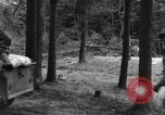Image of Infantry Osterode Germany, 1945, second 37 stock footage video 65675041531
