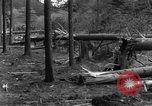 Image of Infantry Osterode Germany, 1945, second 40 stock footage video 65675041531
