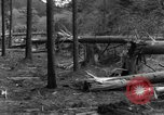 Image of Infantry Osterode Germany, 1945, second 41 stock footage video 65675041531