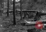 Image of Infantry Osterode Germany, 1945, second 42 stock footage video 65675041531