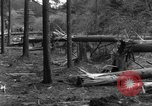 Image of Infantry Osterode Germany, 1945, second 43 stock footage video 65675041531