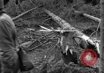 Image of Infantry Osterode Germany, 1945, second 47 stock footage video 65675041531