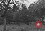 Image of German Mark V tank captured by Americans Saint Lo France, 1944, second 30 stock footage video 65675041541
