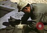 Image of United States Marines Japan, 1950, second 8 stock footage video 65675041609