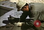 Image of United States Marines Japan, 1950, second 9 stock footage video 65675041609