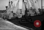 Image of Gdynia harbor Poland, 1959, second 10 stock footage video 65675041632