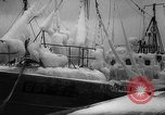 Image of Gdynia harbor Poland, 1959, second 13 stock footage video 65675041632