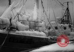 Image of Gdynia harbor Poland, 1959, second 14 stock footage video 65675041632