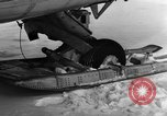 Image of Navion plane Canada, 1951, second 10 stock footage video 65675041668
