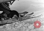 Image of Navion plane Canada, 1951, second 12 stock footage video 65675041668