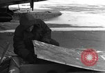 Image of Navion plane Canada, 1951, second 29 stock footage video 65675041668