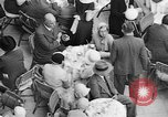 Image of scenes of life in Berlin Germany early 1930s Berlin Germany, 1932, second 62 stock footage video 65675041775
