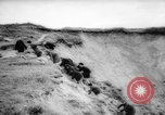 Image of Allied Forces Normandy France, 1964, second 60 stock footage video 65675041870