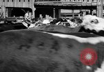 Image of Chicago landmarks and 1950s street scenes Chicago Illinois USA, 1953, second 17 stock footage video 65675041928