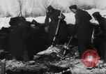 Image of Blue Division Spanish forces under Commander Grandes World War 2 Leningrad Russia Soviet Union, 1942, second 6 stock footage video 65675041932