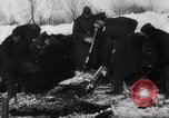 Image of Blue Division Spanish forces under Commander Grandes World War 2 Leningrad Russia Soviet Union, 1942, second 7 stock footage video 65675041932