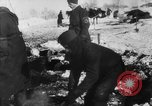 Image of Blue Division Spanish forces under Commander Grandes World War 2 Leningrad Russia Soviet Union, 1942, second 25 stock footage video 65675041932