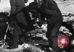 Image of Blue Division Spanish forces under Commander Grandes World War 2 Leningrad Russia Soviet Union, 1942, second 26 stock footage video 65675041932