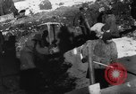 Image of Blue Division Spanish forces under Commander Grandes World War 2 Leningrad Russia Soviet Union, 1942, second 30 stock footage video 65675041932