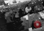Image of Blue Division Spanish forces under Commander Grandes World War 2 Leningrad Russia Soviet Union, 1942, second 31 stock footage video 65675041932