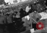 Image of Blue Division Spanish forces under Commander Grandes World War 2 Leningrad Russia Soviet Union, 1942, second 33 stock footage video 65675041932