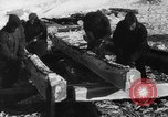 Image of Blue Division Spanish forces under Commander Grandes World War 2 Leningrad Russia Soviet Union, 1942, second 35 stock footage video 65675041932