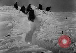 Image of Blue Division Spanish forces under Commander Grandes World War 2 Leningrad Russia Soviet Union, 1942, second 45 stock footage video 65675041932