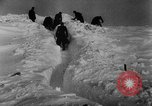 Image of Blue Division Spanish forces under Commander Grandes World War 2 Leningrad Russia Soviet Union, 1942, second 46 stock footage video 65675041932