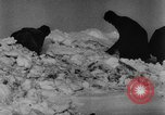 Image of Blue Division Spanish forces under Commander Grandes World War 2 Leningrad Russia Soviet Union, 1942, second 48 stock footage video 65675041932