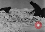 Image of Blue Division Spanish forces under Commander Grandes World War 2 Leningrad Russia Soviet Union, 1942, second 49 stock footage video 65675041932